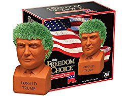 Chia Donald Trump Pottery Planter